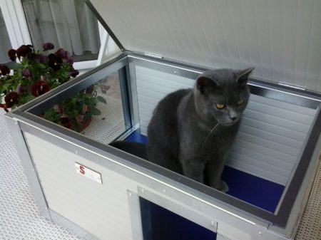 """Thermo Renato Cat house with Window """"CAT"""" insize (LxWxH:54x38x28cm)"""